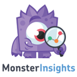 MonsterInsights review